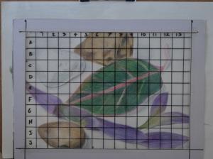 Assignment 1 - Enlargement Grid