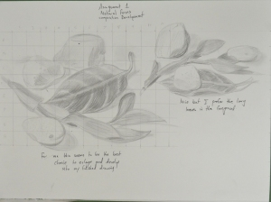 Assignment 1 - Natural Forms - Composition Development