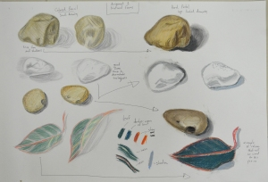 Assignment 1 - Natural Forms - Variations and Materisla Used
