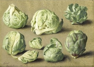 Eliot Hodgkin Seven Brussel Sprouts