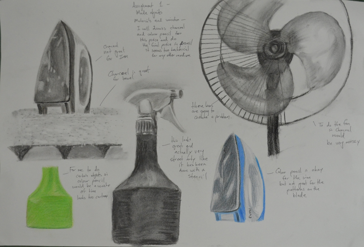 Assignment 1 - Charcoal and Colour Pencil Studies