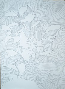 Drawing Negative Space in a Plant 1