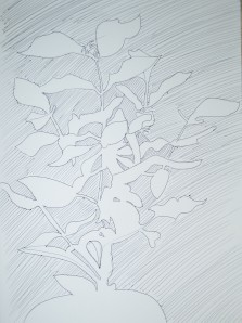Drawing Negative Space in a Plant 2nd Attempt