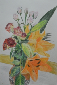 Plants and Flowers in Coloured Pencil