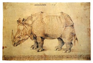 Albrecht Dürer Rhinoceros 1515 pen and ink drawing