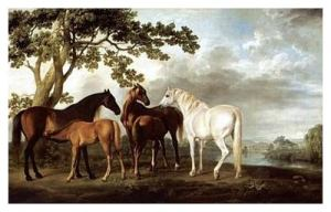 Mares and Foals in a River Landscape 1763-68