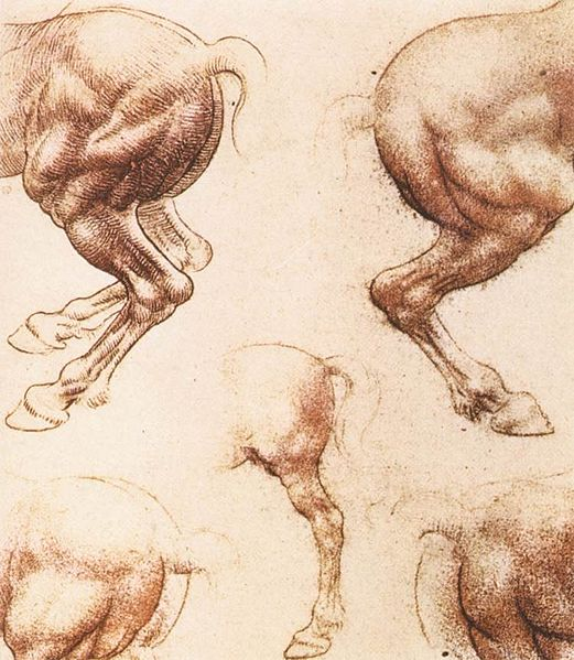 "Leonardo da Vinci ""Study of horses"", red chalk on paper, 1504-6"