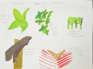 Colour study in Marker Pen
