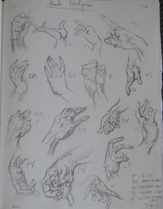 A Practise Drawing Hands