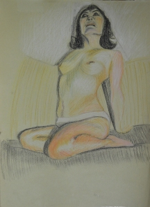 Tonal Study in Pastel Pencil
