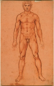 Leonardo da Vinci, A nude man from the front, c. 1504-1506, red chalk and pen and ink