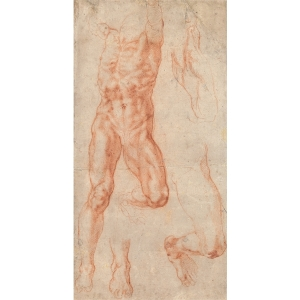 Michelangelo - Studies for Haman