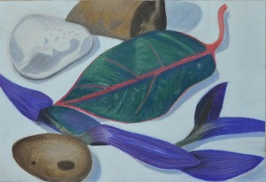 Assignment 1 - Natural Forms - Finished Drawing a2